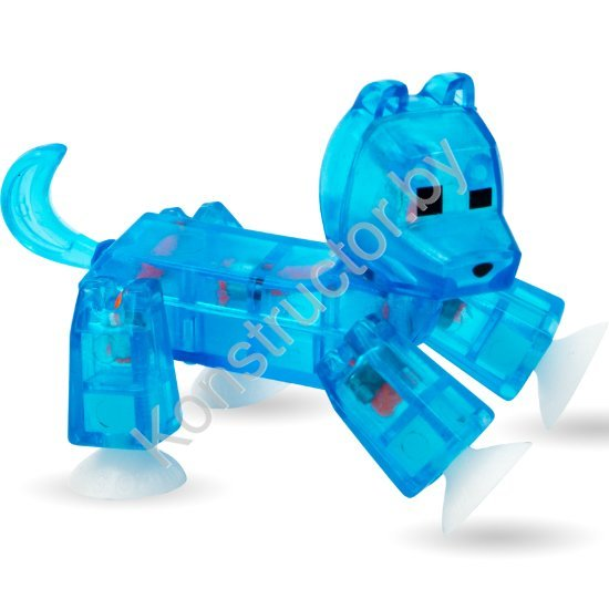 Dog-Clear-Blue-1